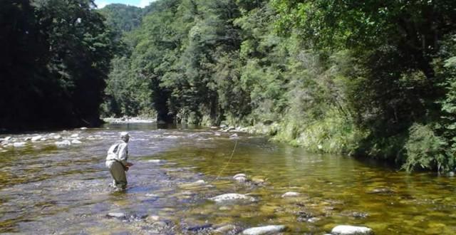 Păstrăvul trăieste în special în apele de munte, habitatul său fiind reprezentat de zone situate la peste 1.000 de metri