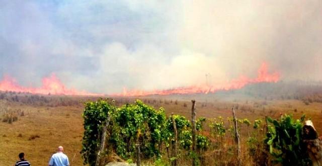 Agricultorii sunt obligați să respecte Bunele condiţii agricole şi de mediu (GAEC 5 şi GAEC 8), conform cărora nu este permisă arderea miriştilor şi a resturilor vegetale pe terenul arabil, precum şi a vegetaţiei pajiştilor permanente.