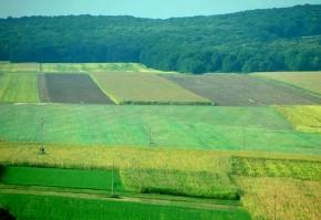 comasarea terenurilor agricole