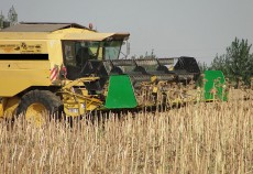 În toate statele europene, numărul exploatațiilor agricole s-a redus în ultimul deceniu.
