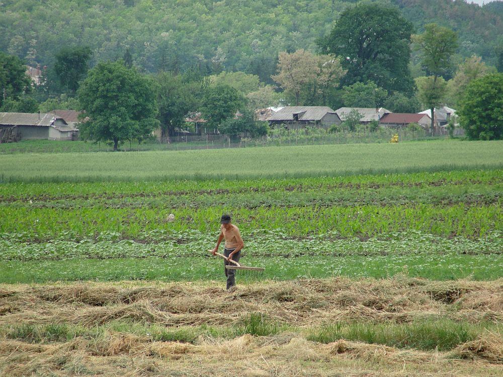 Proiectul de LEGE privind vânzarea – cumpărarea terenurilor agricole situate în extravilan de către persoane fizice, precum și de înființare a Autorității pentru Administrarea și Reglementarea Pieței Funciare