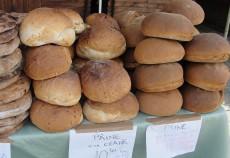 paine gigant la indagra