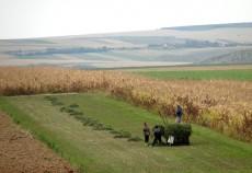 stiri-agricole