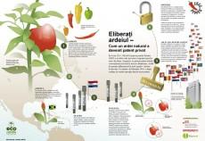 Infografic - Eliberati ardeiul