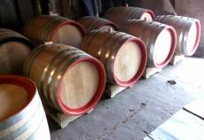 butoaie-stejar-vin