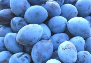 prune-pentru-palinca