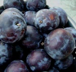 vand-prune