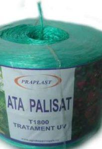 ata-palisare-legume