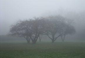 atentionare meteo de ceata