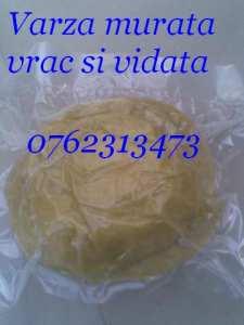 varza-murata-xxL