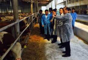 chinezi vizita ferma