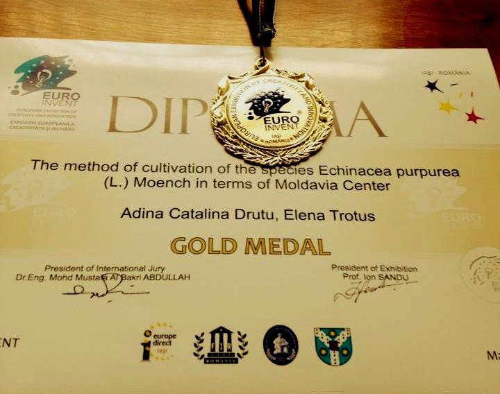 echinacea-purpurea-medalie-aur