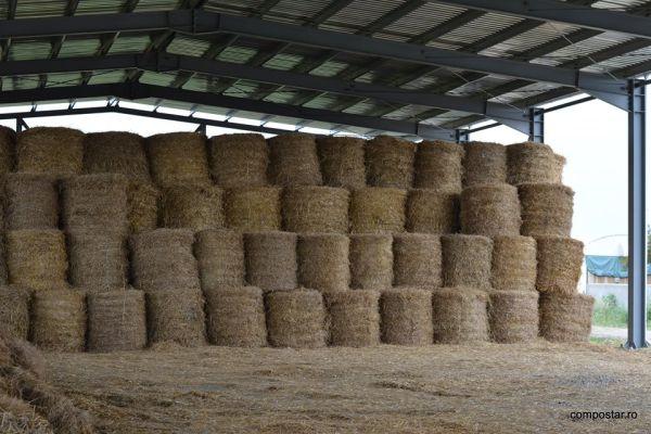 Cooperativei Agricole Compostar 2