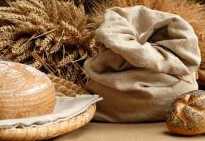 paine grau