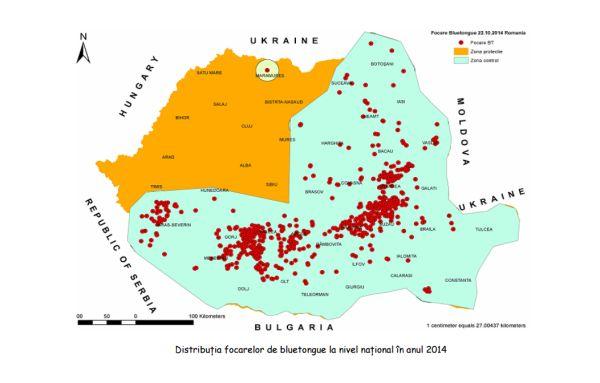 distributia focarelor de boala limbii albastre in 2014