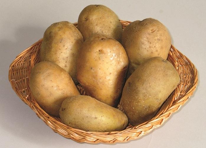 SARMIS cartof