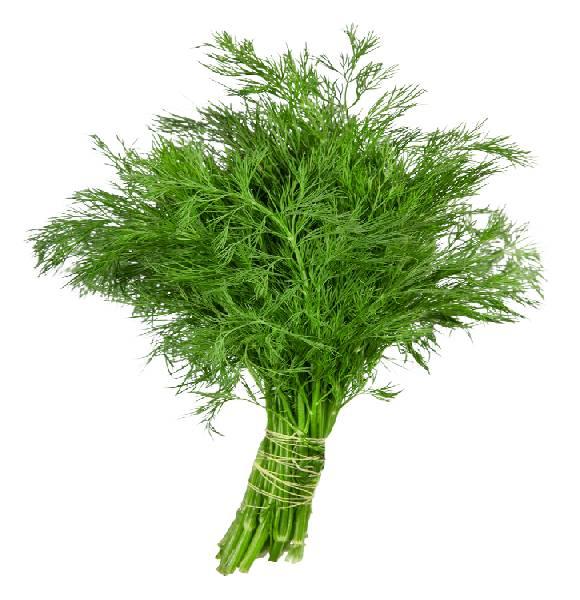 marar verde