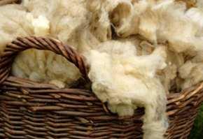 lana de oaie