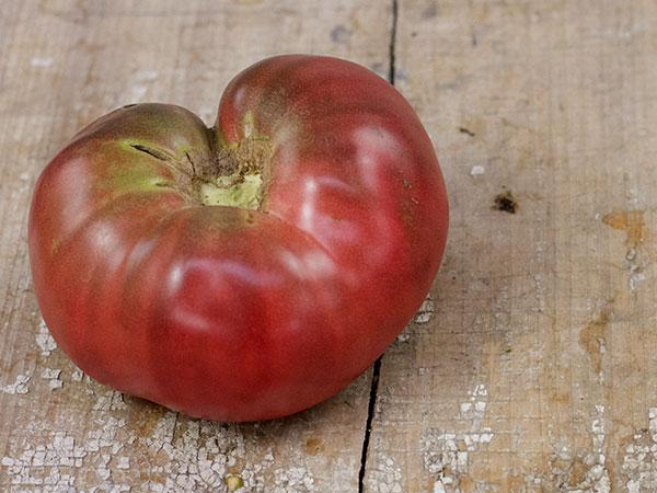 Black-Krim-Tomato
