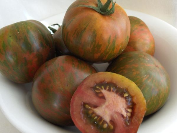 Southern Nights tomate negre