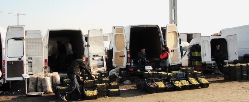 import-produse-Moldova