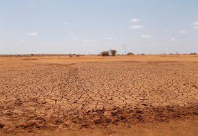 teren arid desert