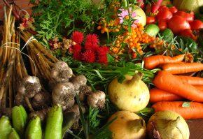 legume ecologice organice-min